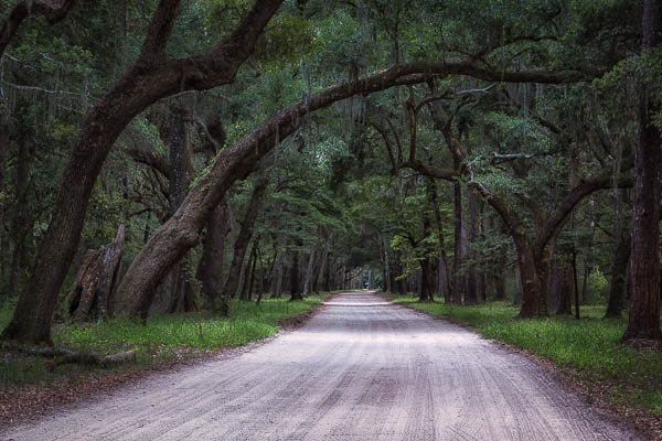 South Carolina photography by Eyal Oren